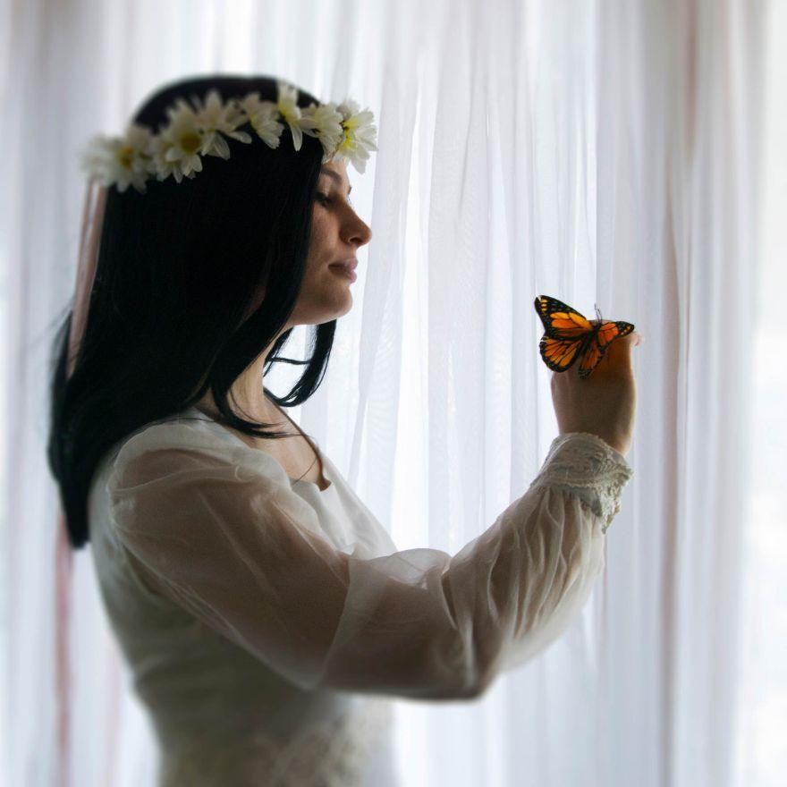 butterfliesarefree